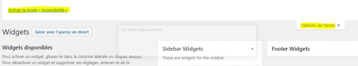 comment activer le mode accessibilité dans les widgets wordpress